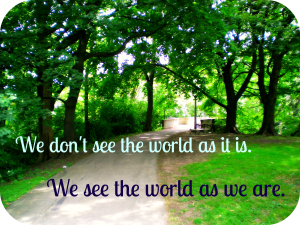 we don't see the world as it is. we see the world as we are.
