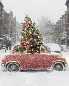 Christmas tree car