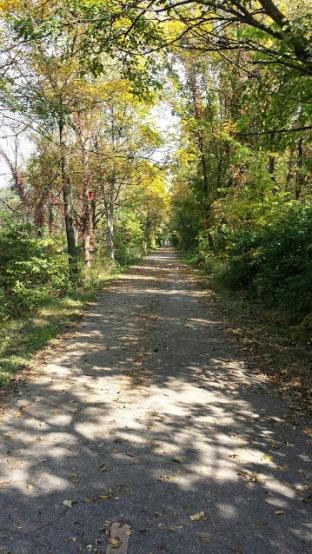 fall-trail2